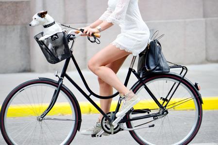 Městská kola - Citybikes